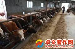 畜牧养殖实用新型专利有哪些